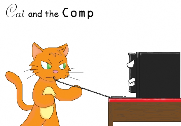 Cat and the Comp
