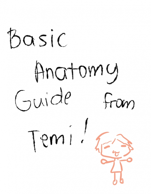 Temi's Basic Anatomy Guide (female)