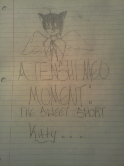 A TENSHI MEO MOMENT: The sweet short kitty