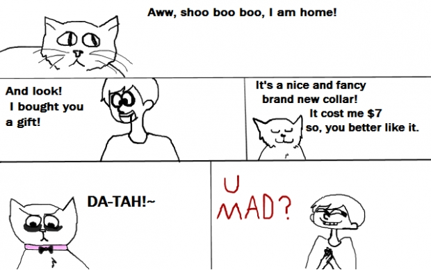 My cats love me. Really!